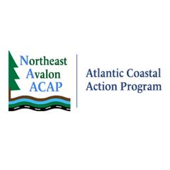 logo-acap-northeast